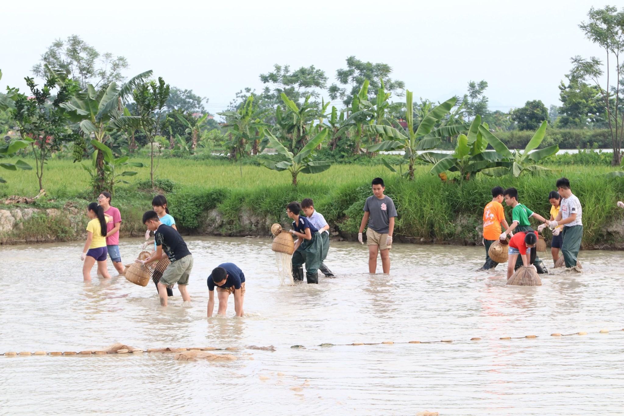Chương trình học tập trải nghiệm tại Nhà Diều, Trầm Lộng, Ứng Hòa, Hà Nội